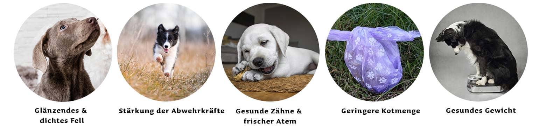 proCani BARF Frostfutter Kaninchenkomplett für Hunde