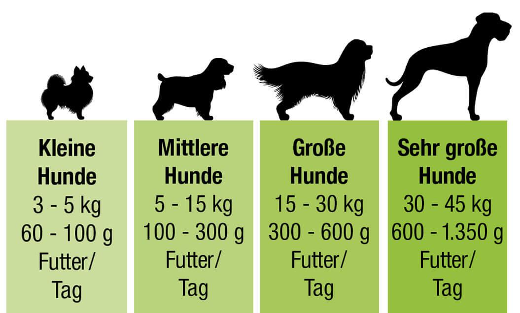 proCani Fütterungsempfehlung für Hunde